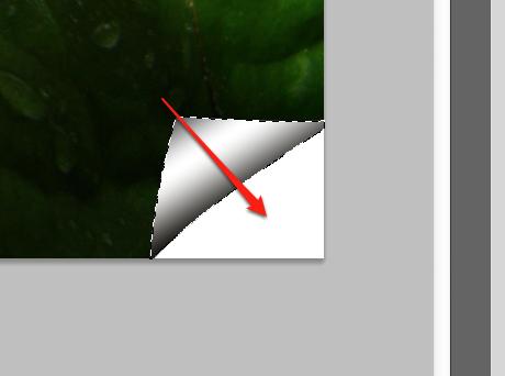 Ziehen sie das Verlaufswerkzeug über die Auswahl (sollte dann in etwa so aussehen wie auf dem Screenshot).